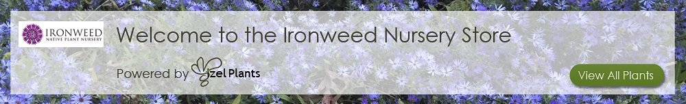 Ironweed Vendor Banner